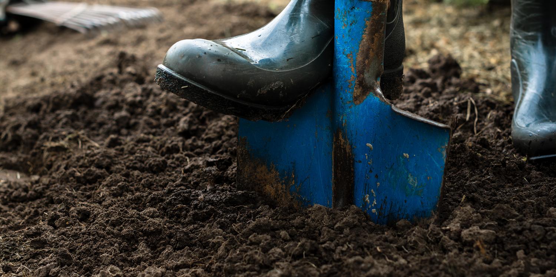 blue shovel digging up soil