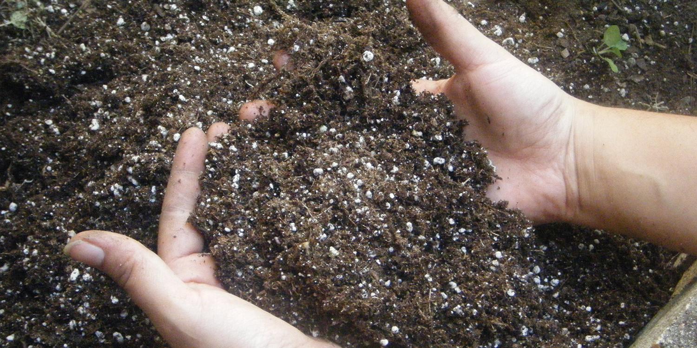 hands scooping up soil for soil amendment