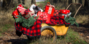 2019-gift-guide-for-gardeners-presents-in-vintage-lawn-cart