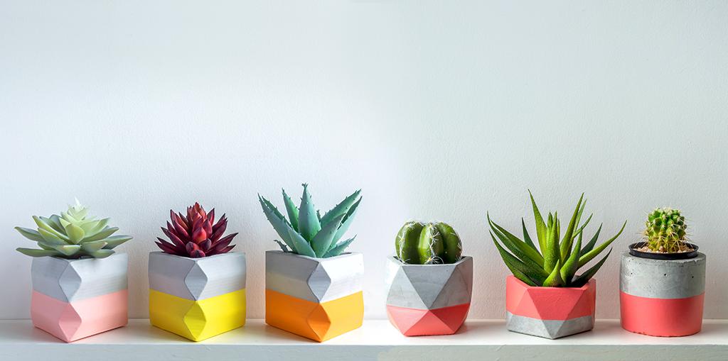 pottery-trends-2020-geometric-pots-header