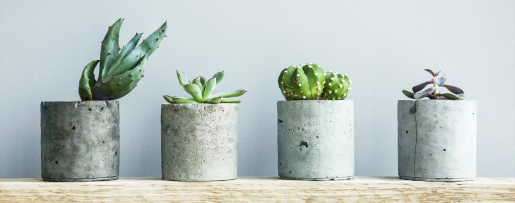 pottery-trends-2020-living-color-concrete