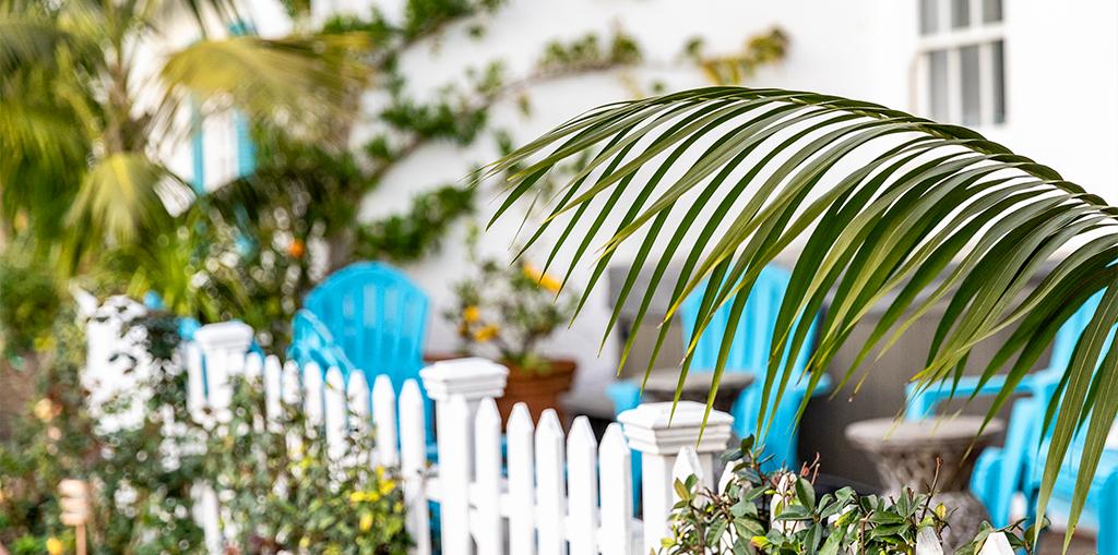 protect-plants-heat-waves-hurricanes-living-color-florida-header