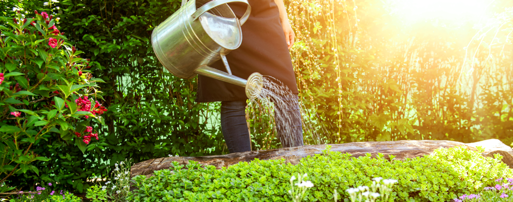 living-color-summer-gardening-watering