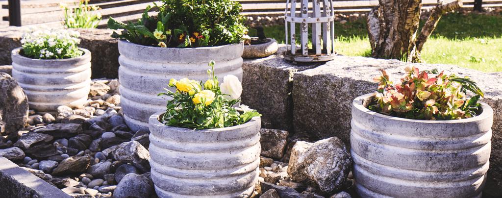 living-color-2021-garden-landscape-design-trends-concrete-planters