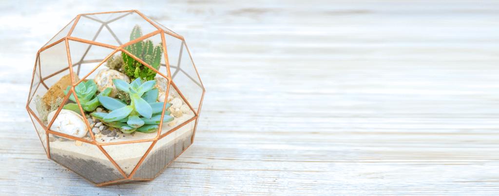 living-color-DIY-succulent-terrarium-gold-sphere-container