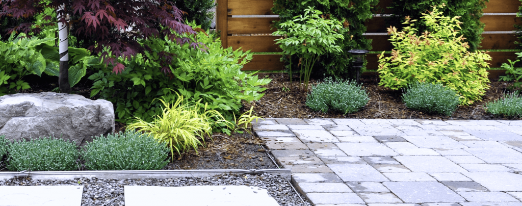 living color benefits of groundcover plants mulched beds