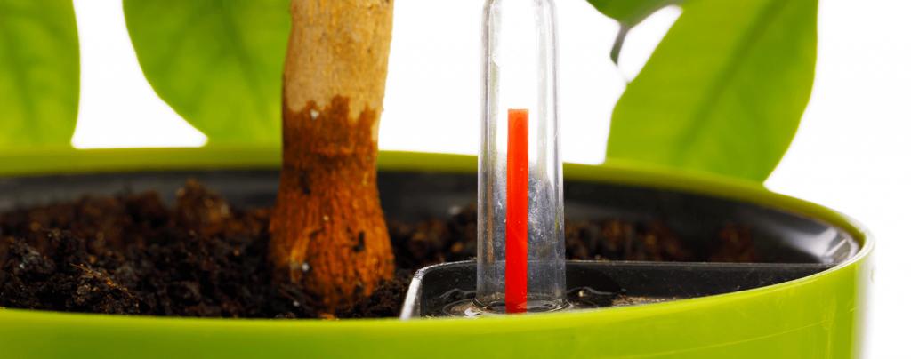 living color garden center self watering pots measuring device