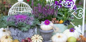 Seasonal fall decor outdoors Living Color Garden center