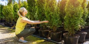 woman choosing cedar tree Living color garden center